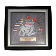 Коллекционная табличка Michael Schumacher